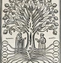 Pàgina il·luminada d'una edició de L'arbre de la ciència (1635) de Ramon Llull. Gravat. J. Bedmar/Iberfoto