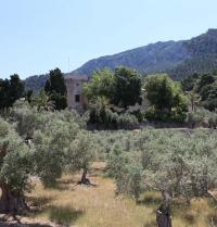 Monestir de Miramar. Valldemossa, Mallorca. IRU, SL.